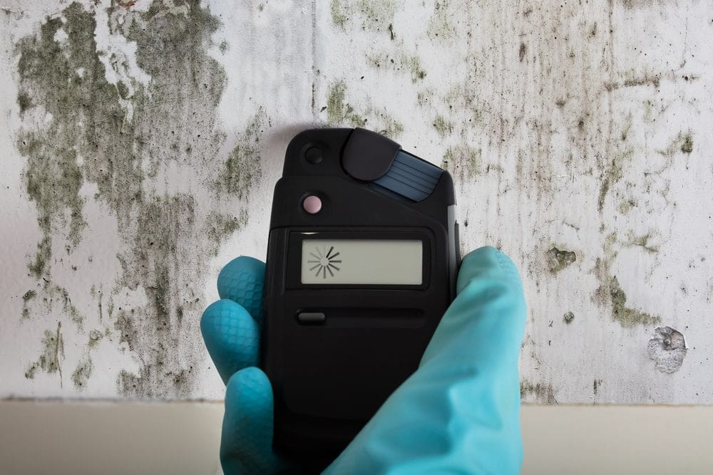 Close-up Of Person's Hands With Gloves Measuring Wetness Of Moldy Wall With Moisture Meter