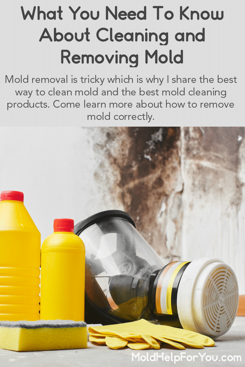 Items needed to remove mold from a moldy house.