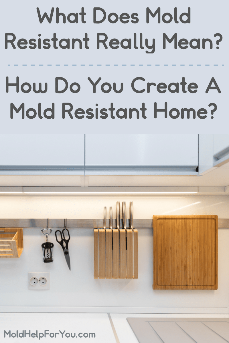 Mold resistant kitchen items