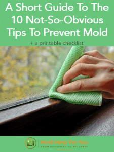 A short guide to the 10 not-so-obvious tips to prevent mold is written above an image of a hand holding a green cloth wiping condendation from a window