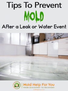 Tips to prevent mold after a leak or water event is written above an image of a flooded kitchen floor