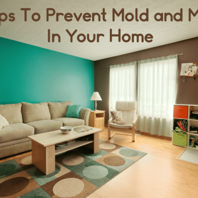 Mold Prevention – 27 Tips To Prevent Mold and Mildew In Your Home