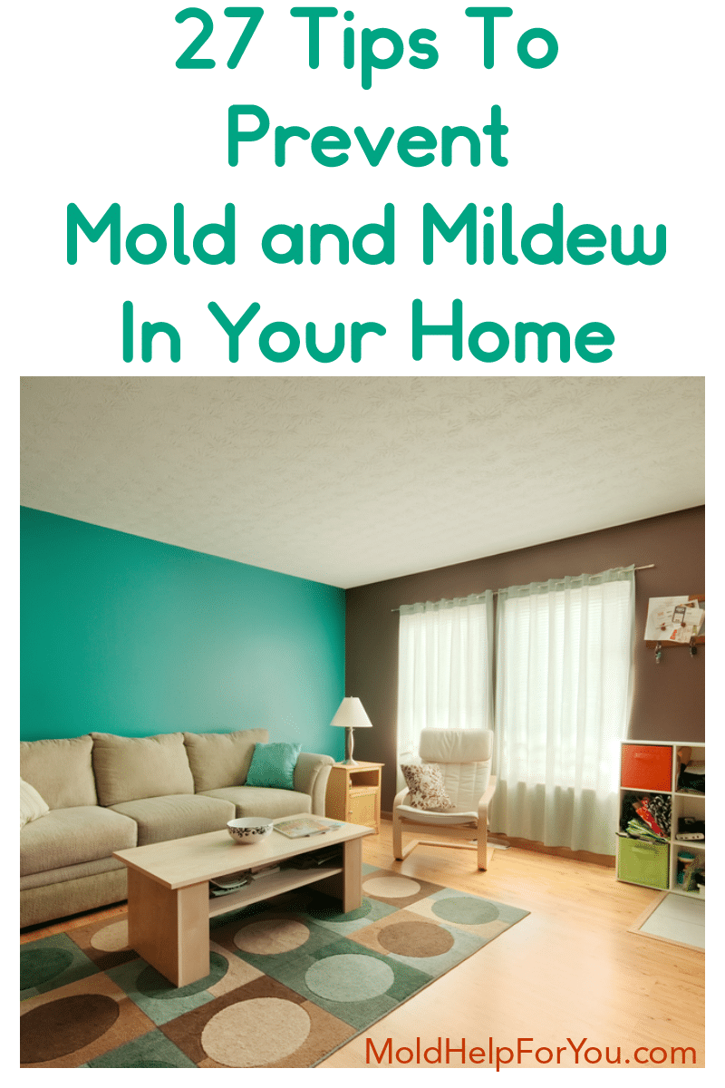 A beautiful mold-free living room thanks to the homeowners using 27 tips to prevent mold.
