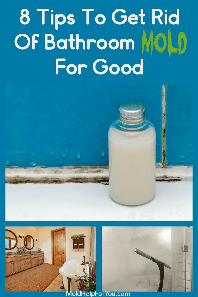 A moldy shower. How to prevent bathroom mold.