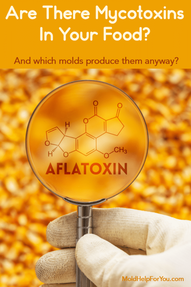 Aflatoxin molecular structure over a corn kernal background