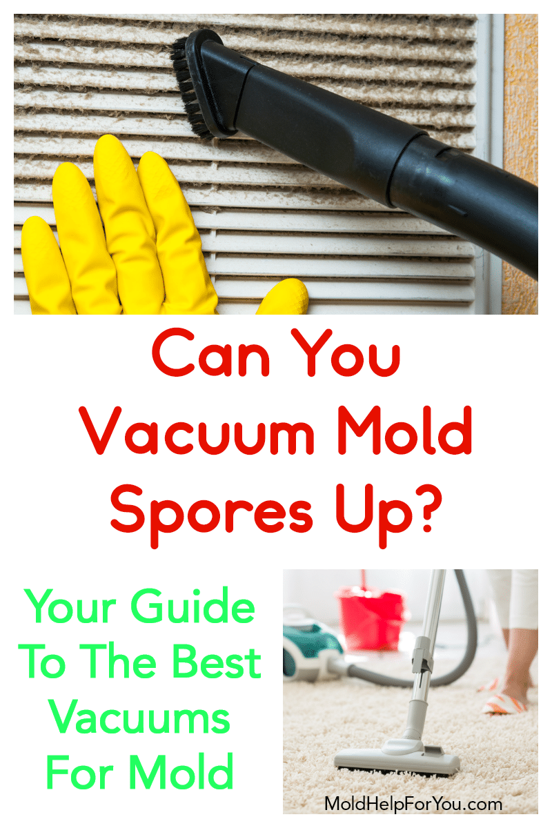 A canister vacuum on carpet - one of the 7 best HEPA vacuums for mold