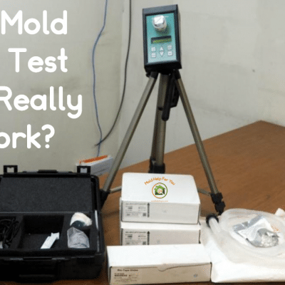 Does A Mold Air Test Really Work?