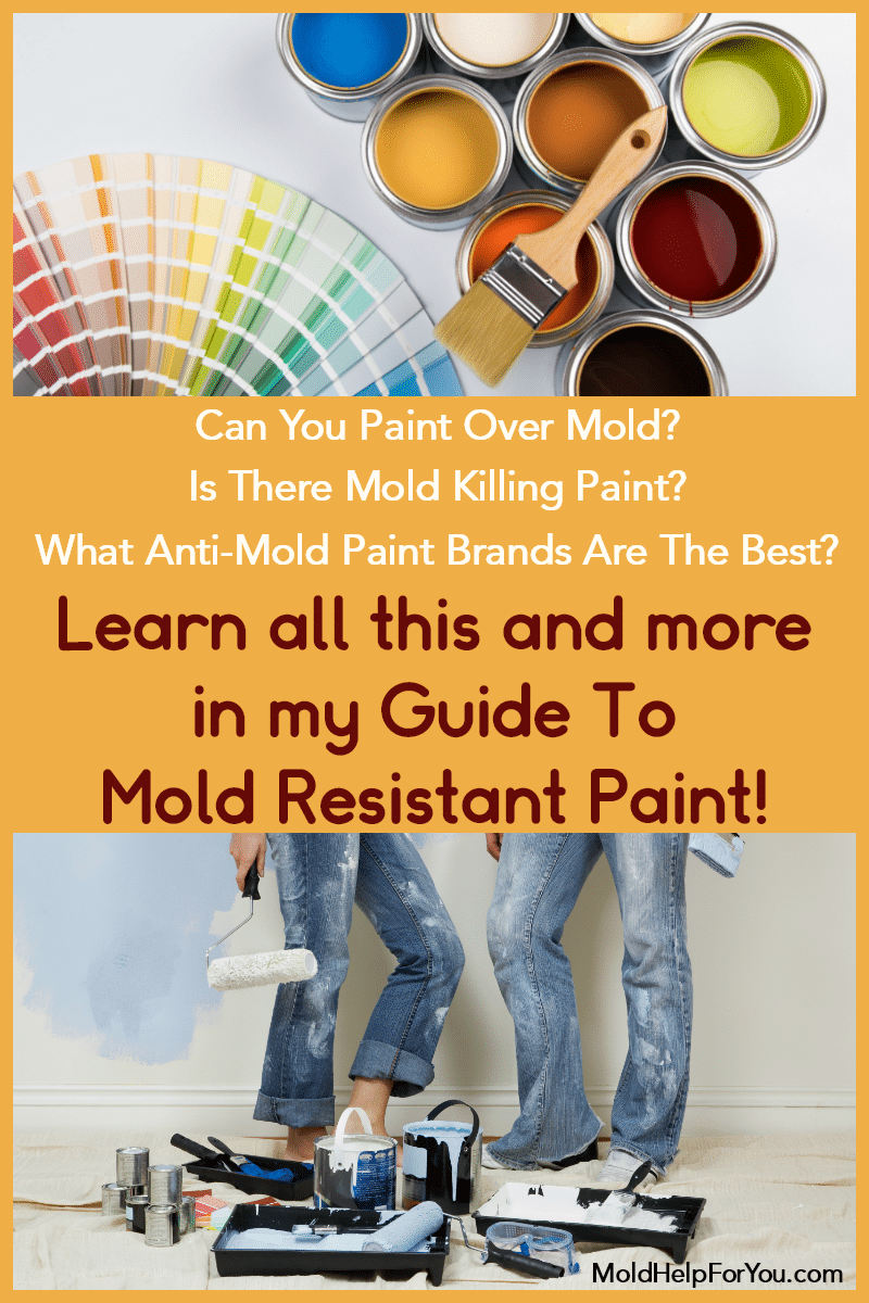 A pallet of mold resistant paint