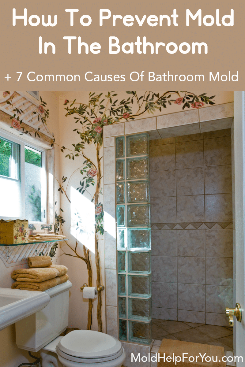 A mold free bathroom. Find out the common causes of bathroom mold.