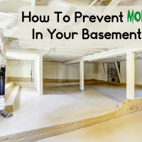 How To Prevent Mold In The Basement + 13 Basement Mold Tips