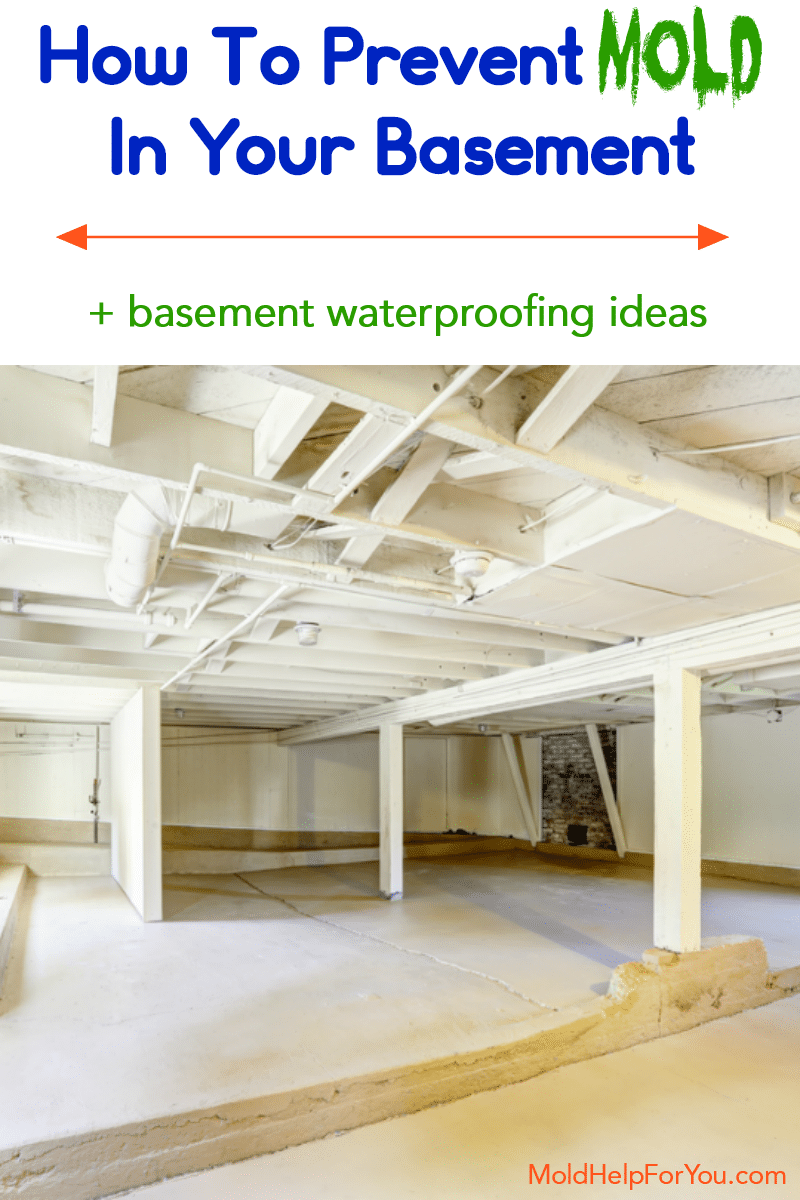 A mold free basement because the homeowners followed a guide on how to prevent mold in the basement.