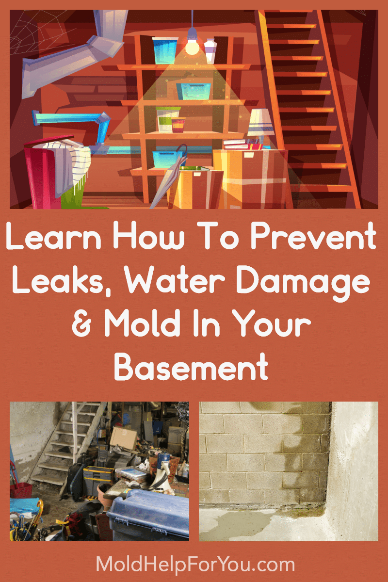 A wet basement, a water damaged basement, a moldy basement. Prevent mold in the basement. Prevent leaks in the basement.