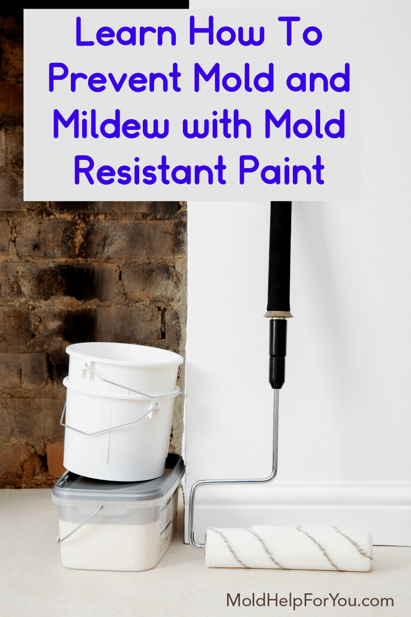 A 5 gallon bucket of mold resistant paint ready for the bathroom wall