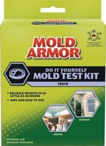 Mold Armor Mold Test