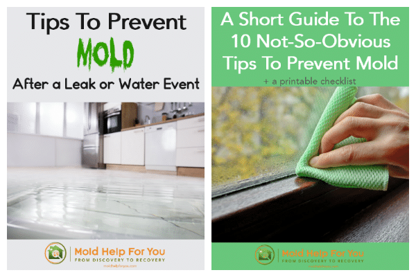 Cover photos of mold prevention tip sheet and leak prevention tip sheet