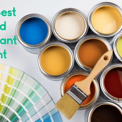 The Best Mold Resistant Paint