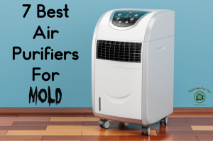 One of the 7 best air purifiers for mold on a teal background
