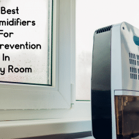 Best Dehumidifiers For Mold Prevention In Every Room