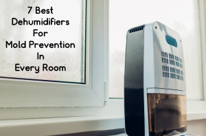 """A small dehumidifier in front of a window with condensation. The words """"The 7 Best Dehumidifiers For Mold Prevention"""" written above."""