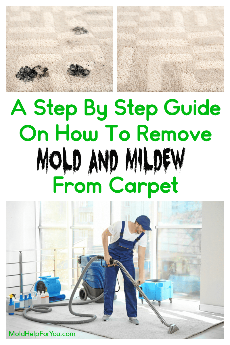 Tan carpet with mold before being cleaned. How to remove mold and mildew from carpet is written above an image of a man cleaning a moldy area rug