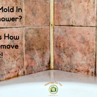 Black Mold In The Shower? Here's How To Remove It!
