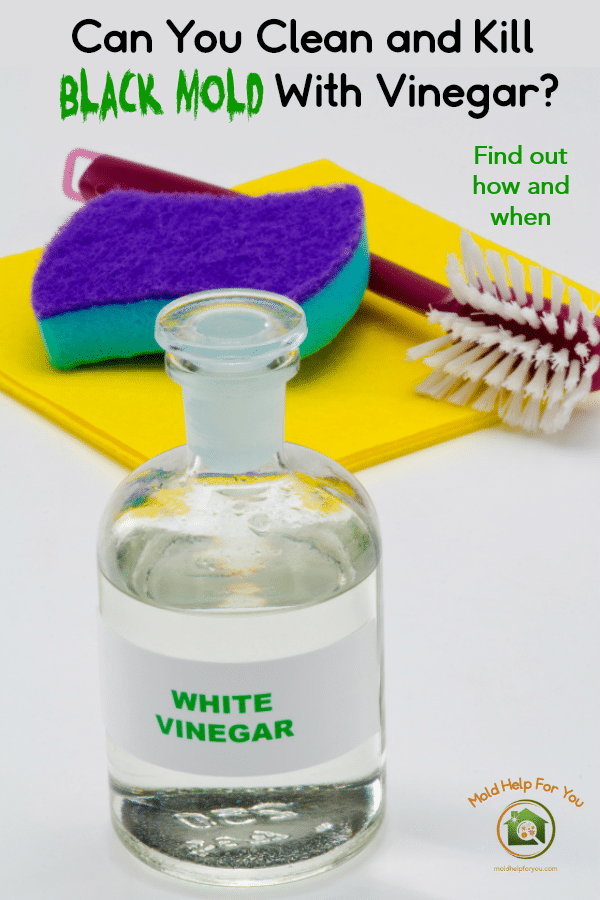 "A glass bottle of vinegar, a yellow dish towel, a scrub brush, and a blue scouring pad. The words ""can you clean and kill black mold with vinegar"" are written above"