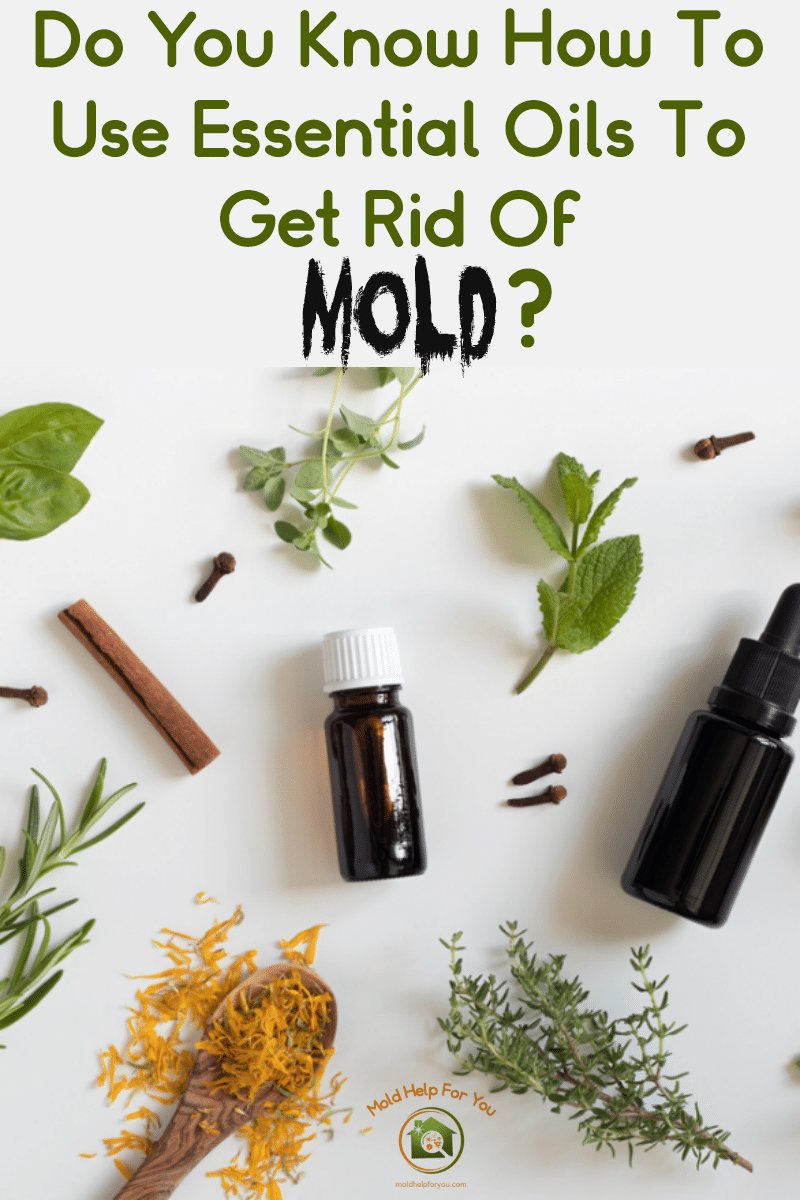 A collage with essential oils for mold