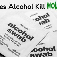 Does Alcohol Kill Mold?
