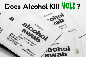 """Alcohol pads with the caption """"does alcohol kill mold?"""""""