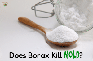 An image of borax on a spoon about to be used to make borax mold remover