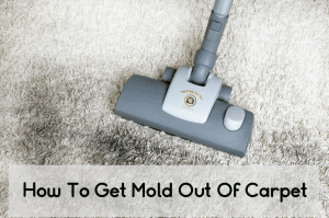 Someone trying to remove black mold from carpet with a HEPA vacuum