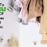 How To Get Mold Out Of Clothes and Fabrics