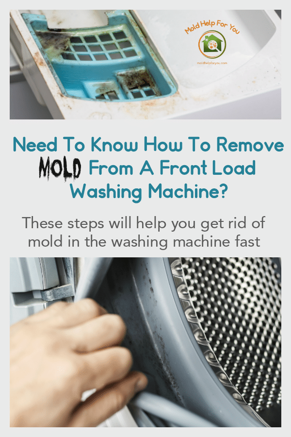Mold inside a front load washing machine. The person is wondering how to remove the mold.