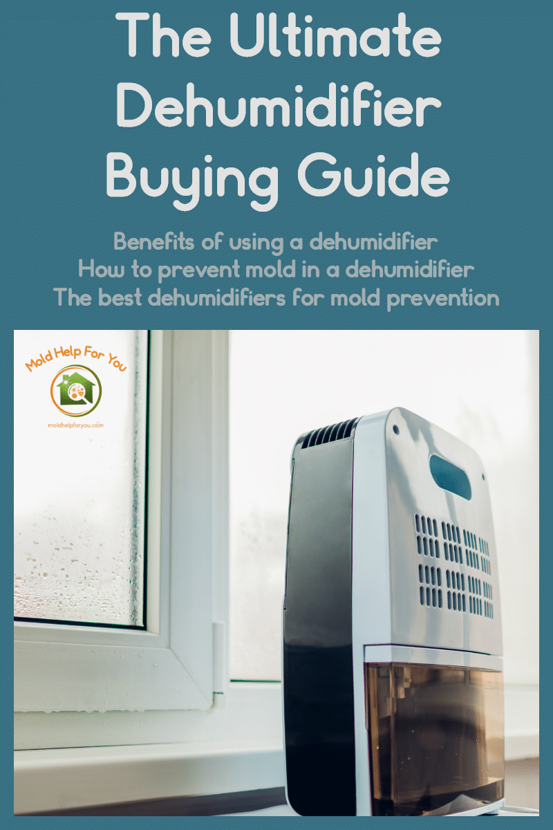 "A small dehumidifier in front of a window with condensation. The words ""The Ultimate Dehumidifier Buying Guide"" are written above."