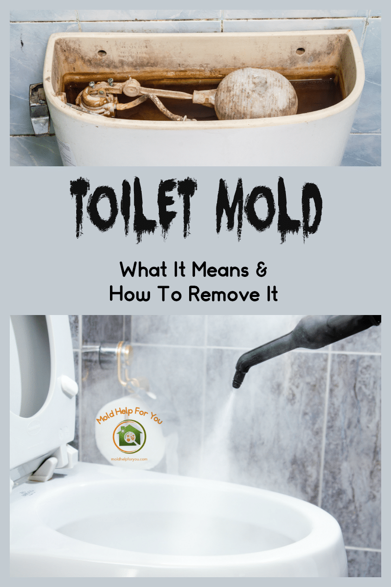 "A moldy toilet tank with the caption ""toilet mold - what it means and how to remove it"" written below"