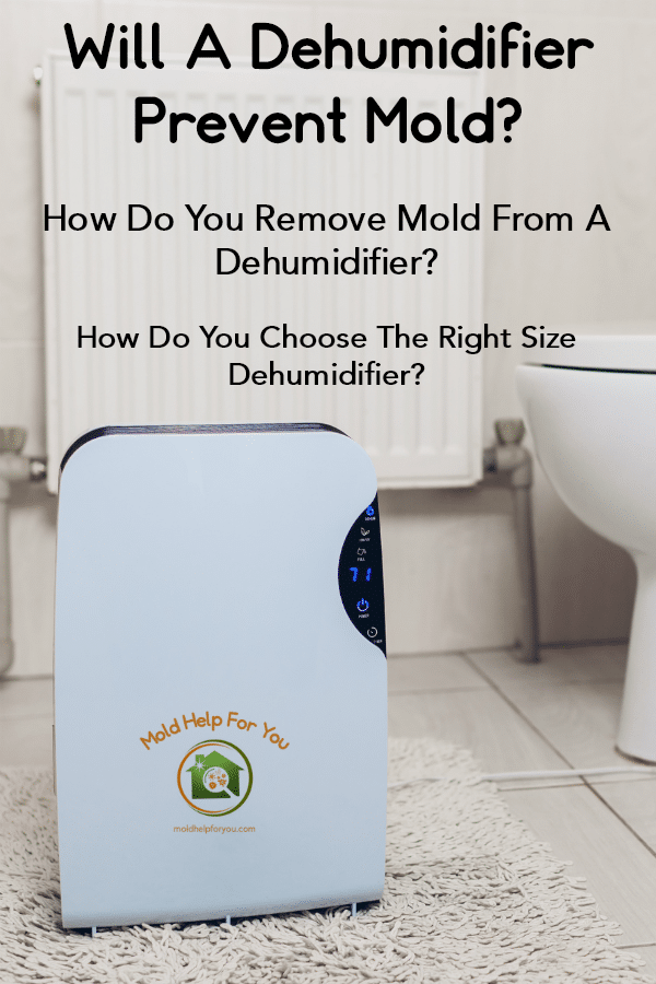 "A dehumidifier in a bathroom with the title ""Will a dehumidifier prevent mold?"""