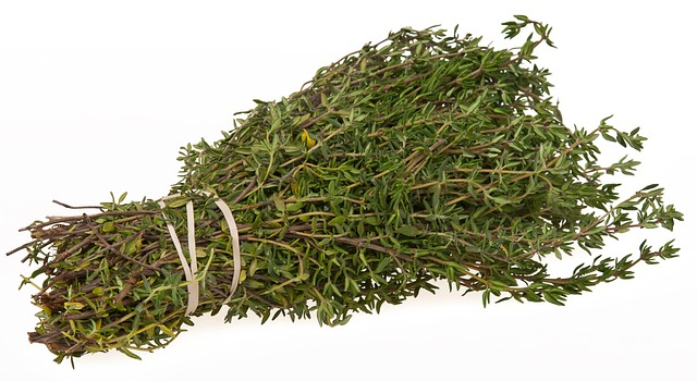 A bundle of fresh thyme