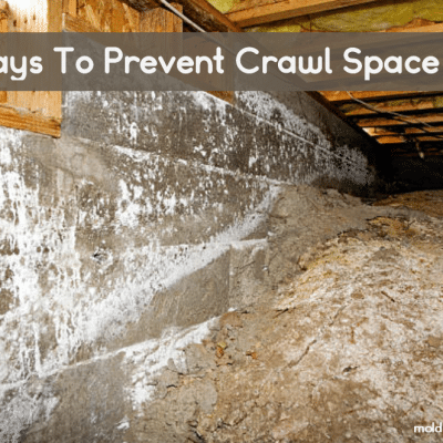 10 Ways To Prevent Crawl Space Mold + Crawlspace Mold Removal