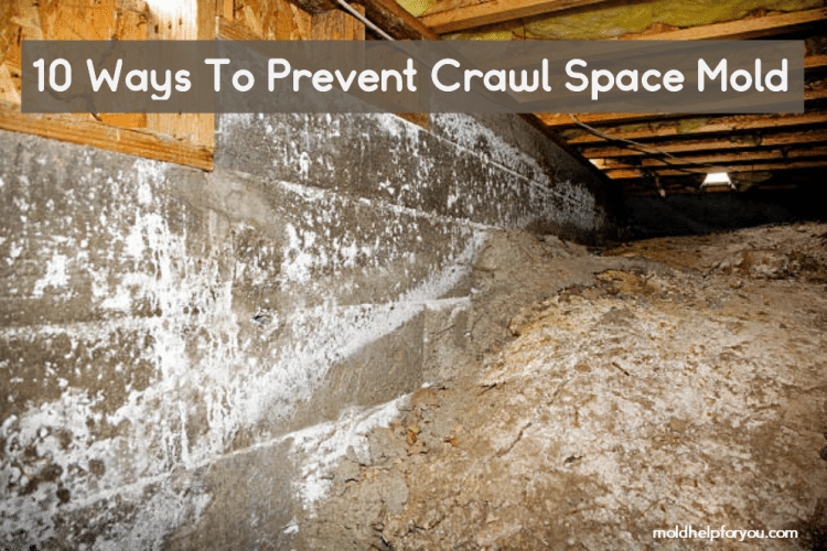 A Crawl space with mold
