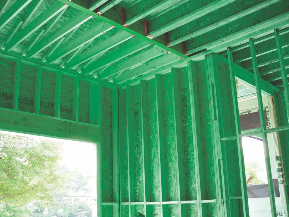 Frame Gaurd Mold Resistant Plywood