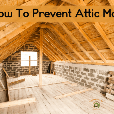 How To Prevent Attic Mold + Attic Mold Tips