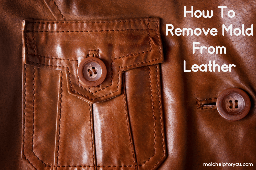 How Remove Mold From Leather The Easy Way Help For You