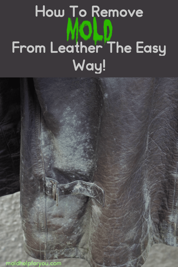 "A moldy leather jacket and the title ""how to remove mold from leather the easy way."""