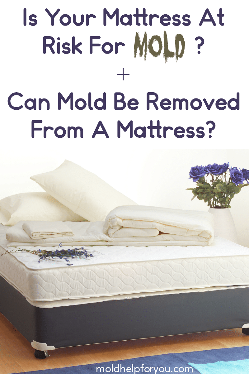 "A bare mattress with the title ""Is your mattress at rosk for mold?"""