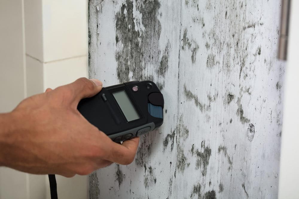 Pin-type moisture meter on a mold wall