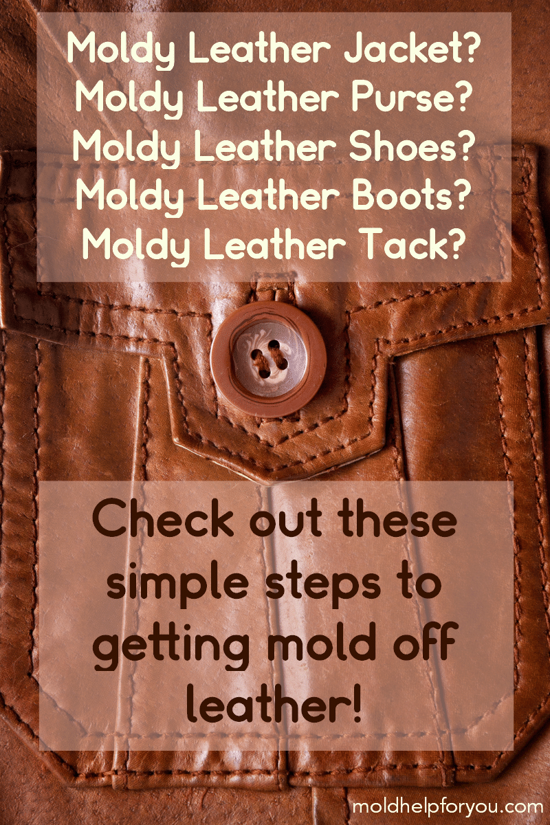 "A leather jacket with an overlay that says ""check out these simple steps to getting mold off leather."""