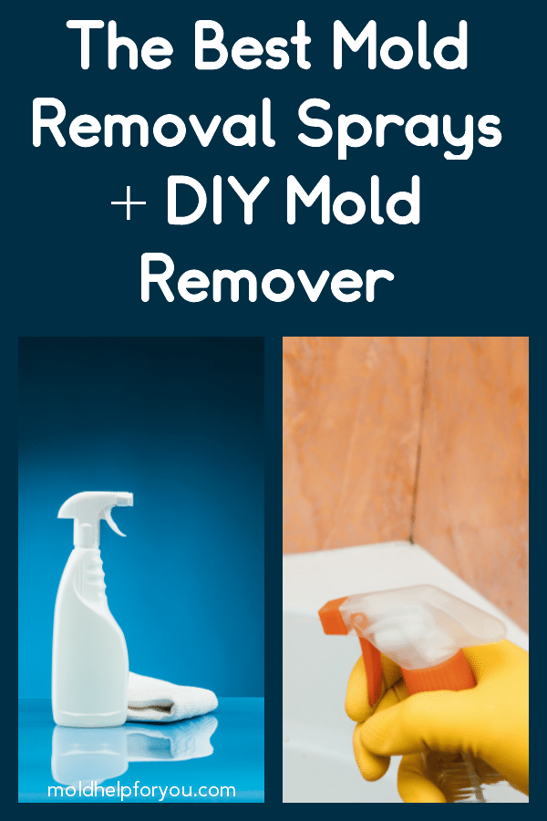 A bottle of mold removal spray and a bottle of DIY mold remover
