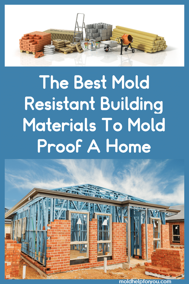 Various mold resistant building materials