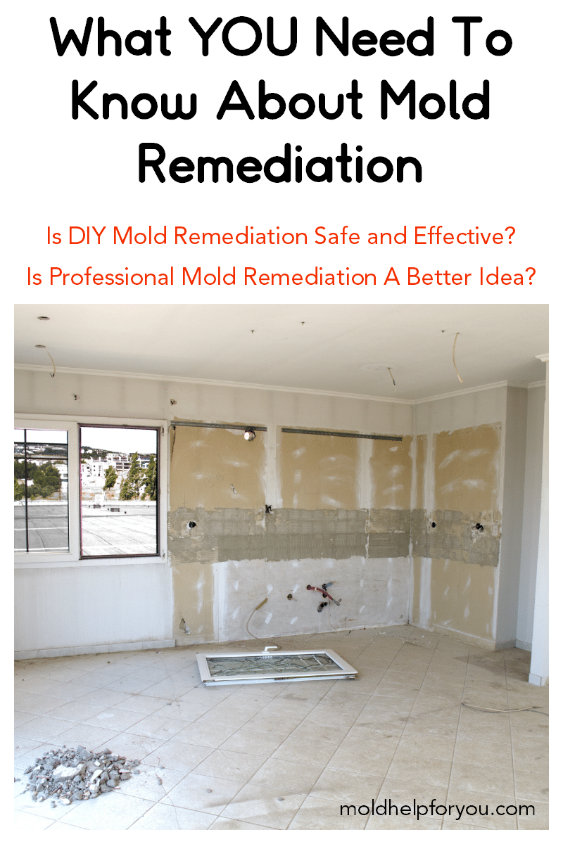 DIY mold remediation in a kitchen and living room