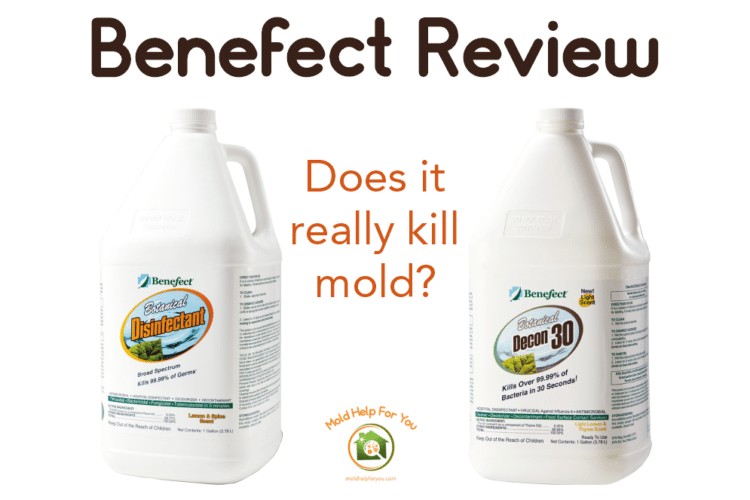 Benefect Botanical Disinfectant and Benefect Decon 30 bottles
